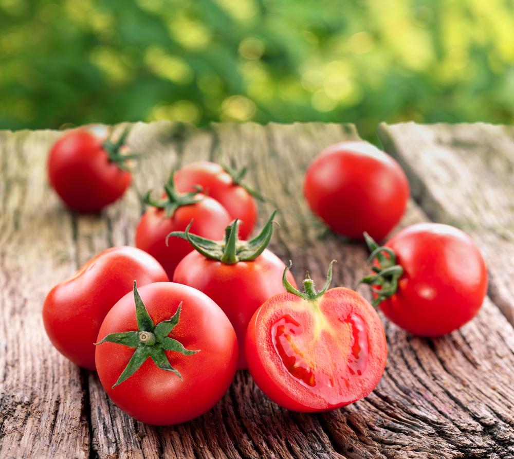помидоры  фото