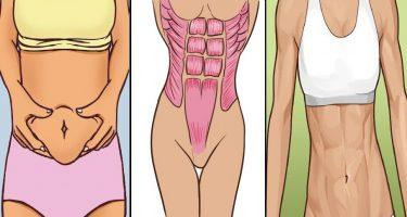 Как сделать плоский живот и тонкую талию