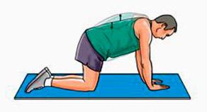 укрепление мышц нижней части спины