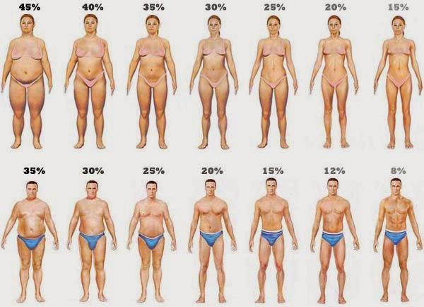 жир в процентном соотношении