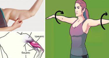 Тренировка рук с гантелями