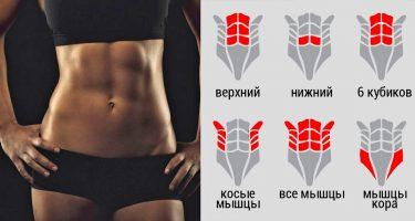 Упражнения, которые помогают сделать живот плоским